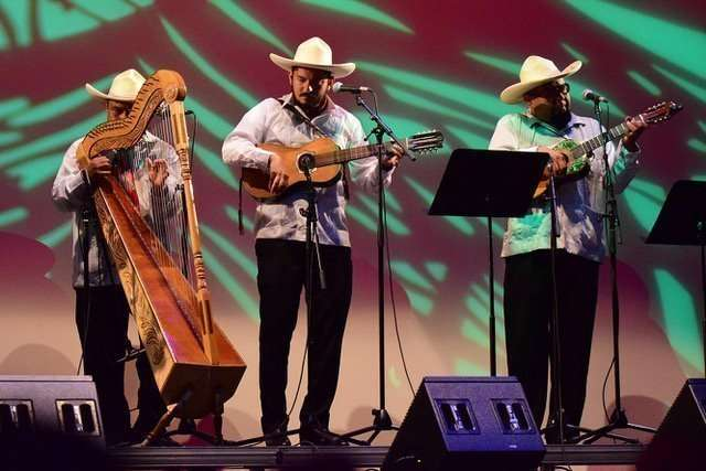 Son Jarocho by Conjunto Tenocelomeh